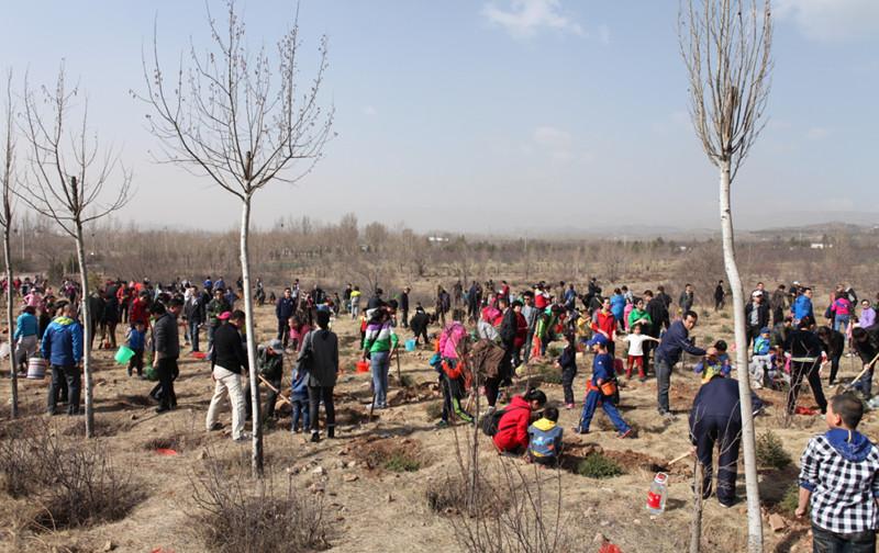 公益生态林捐植